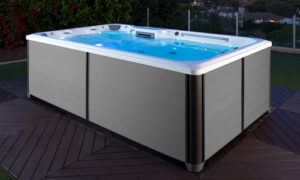 RecSport™ Recreational Systems Endless Pool Swim Spa image